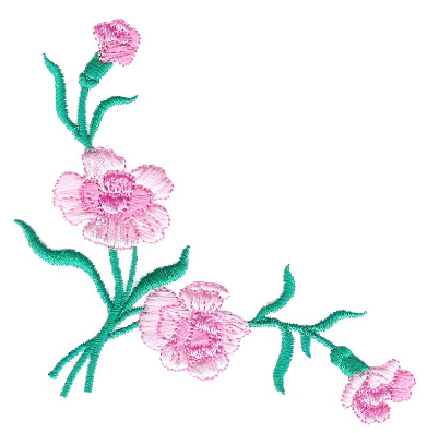Carnations Corner