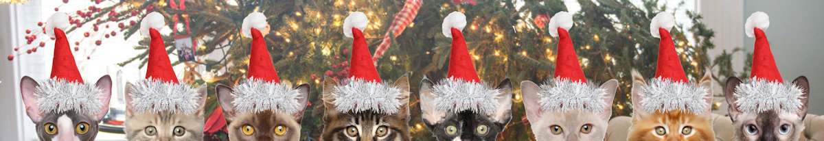 Christmas Kitties in a Row
