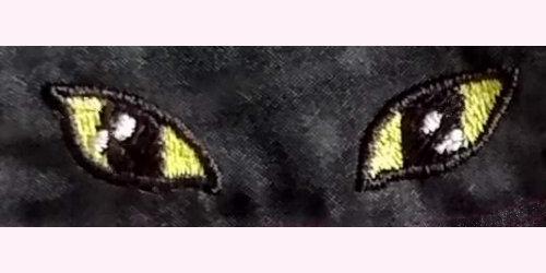 LaurasSEwingStudio-300dpi-DivaKatz-eyes-Ca03-x500x250