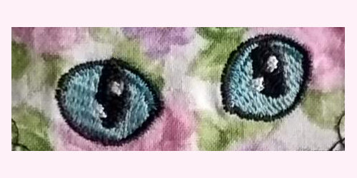 LaurasSEwingStudio-300dpi-DivaKatz-eyes-Cat01-x4500x250