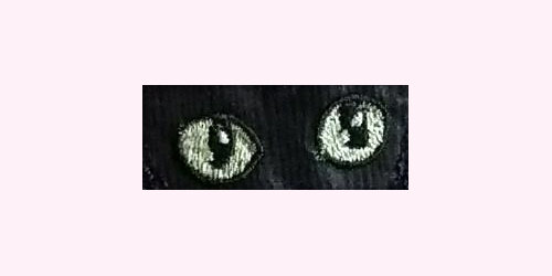 LaurasSEwingStudio-300dpi-DivaKatz-eyes-Cat01-x500x250