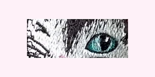 LaurasSEwingStudio-300dpi-DivaKatz-eyes-Cat02-x500x250